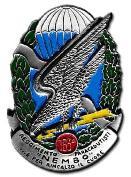 183 RGT Paracadutisti Nembo.JPG